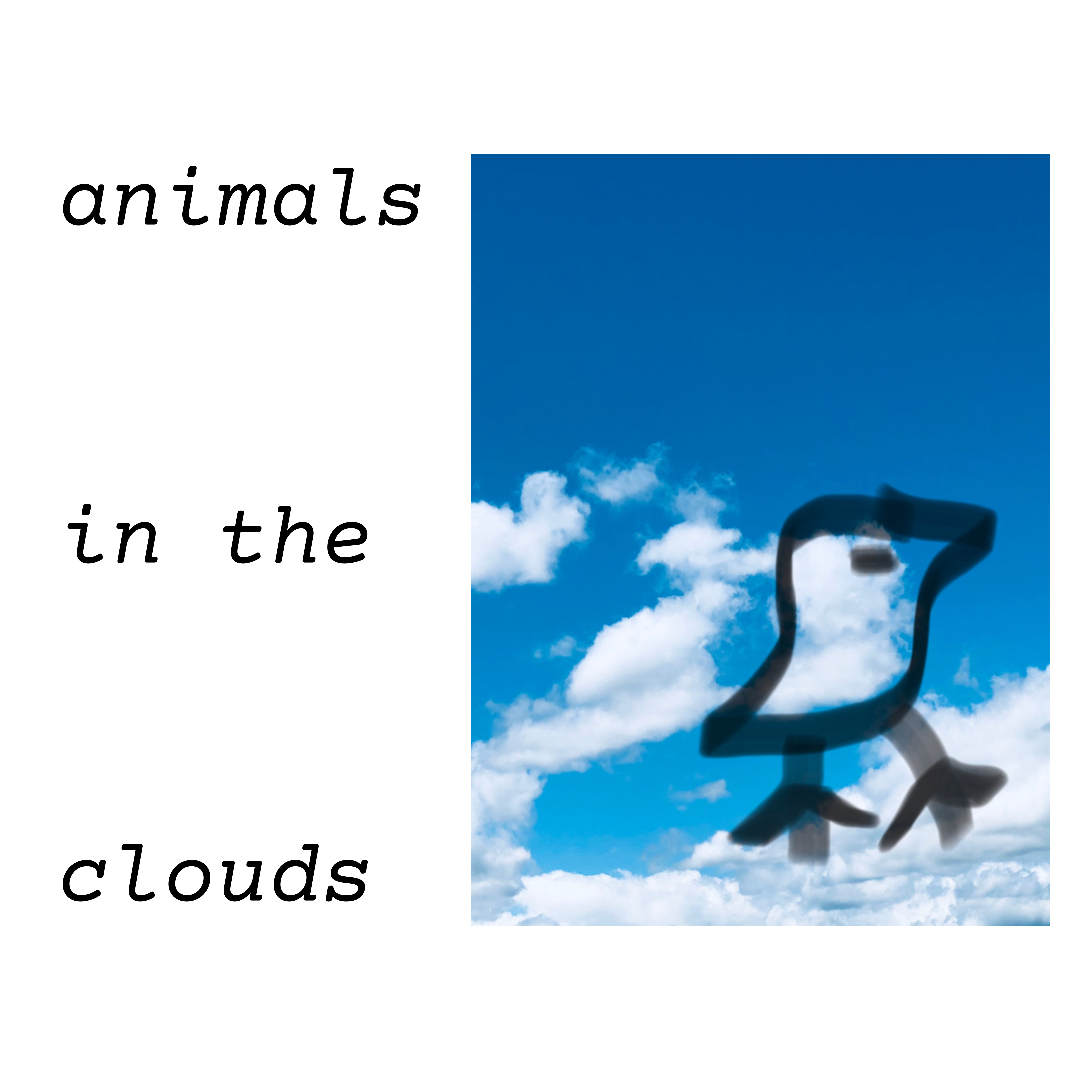 animals in the clouds