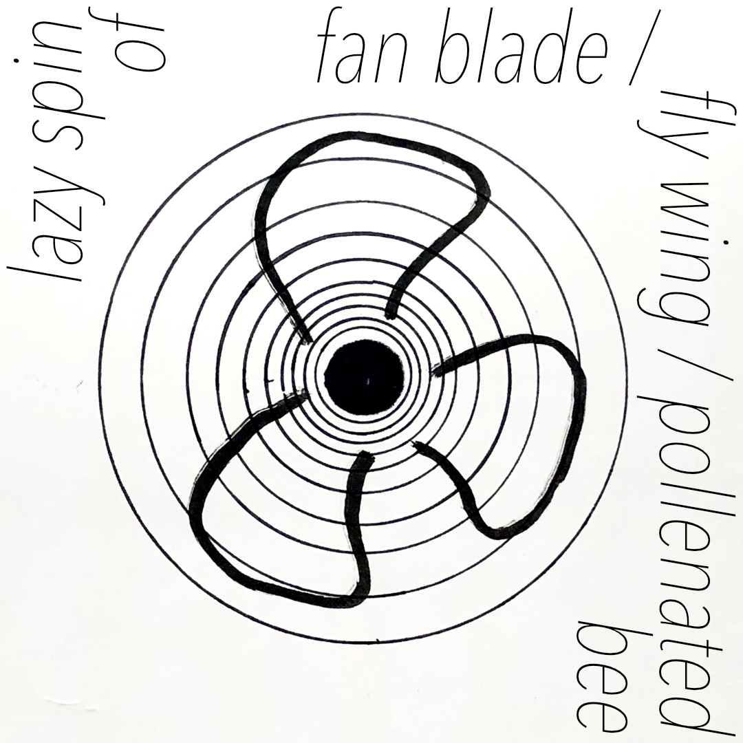 lazy spin of fan blade / fly wing / pollenated wing