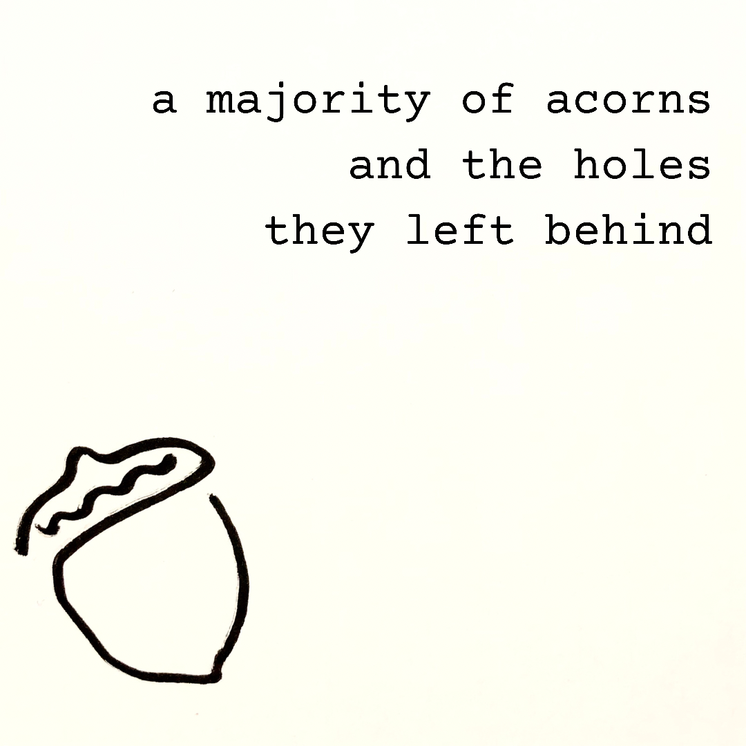 a majority of acorns  and the holes they left behind